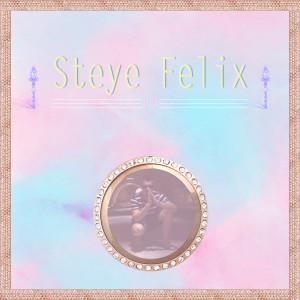 steye cover
