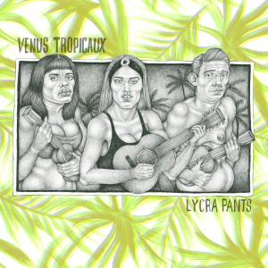 cover Lycra Pants